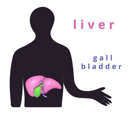 Human internal organ - realistic liver with the name.Anatomy.Human liver, gallbladder.Human body part.Modern flat cartoons vector illustration icons on white.