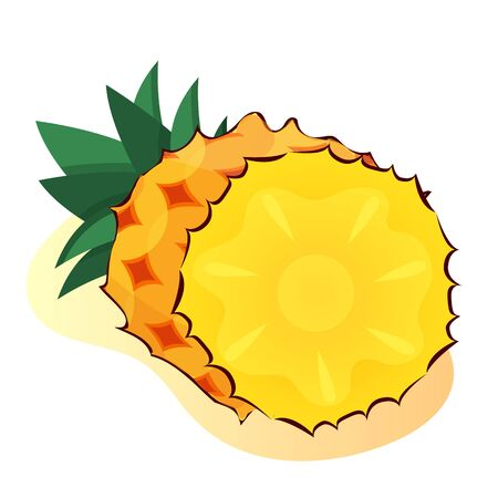 pineapple slice fresh tropical summer fruit pineapple ananas pine for healthy lifestyle.
