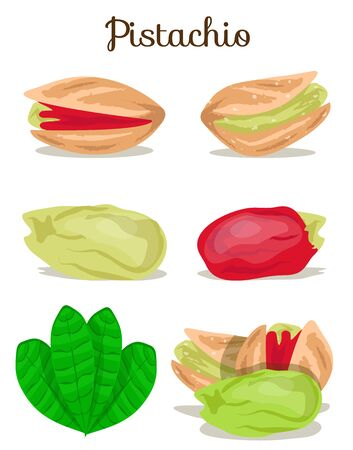 Set of assorted nuts poster illustration Stockfoto - 132780551