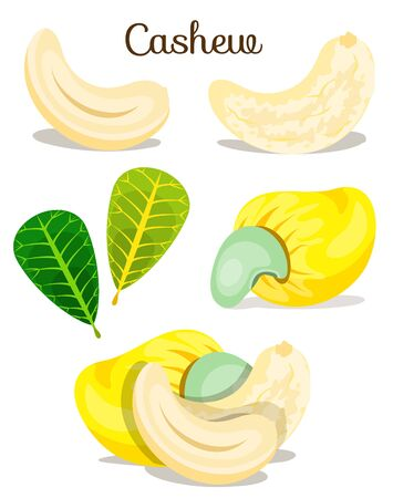 Set of assorted nuts poster illustration Ilustracja