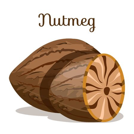 Set of nuts poster Flat cartoon vector illustration on white. Stockfoto - 131795867