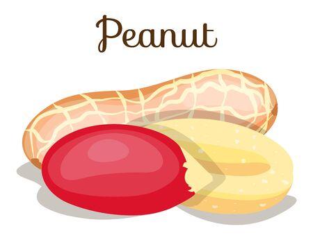 Set of nuts poster Flat cartoon vector illustration on white. Stockfoto - 131794867