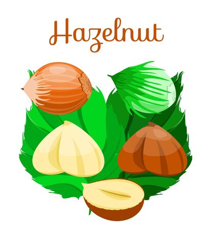 Set of nuts poster Flat cartoon vector illustration on white. Stockfoto - 131794946