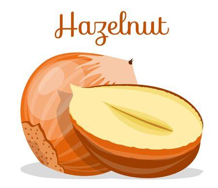 Set of nuts poster Flat cartoon vector illustration on white. Stockfoto - 131794982