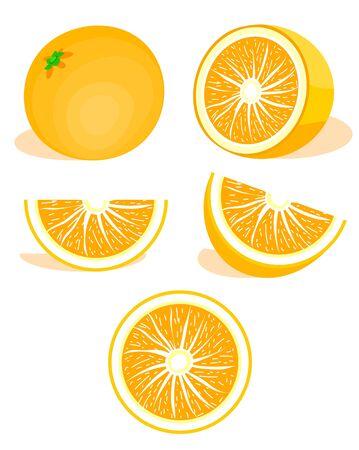 Orange,citrus set. Modern flat cartoons style vector illustration icons. Isolated on white background. Ripe fresh cut in half. Orange slice, half cut orange and front view of cut ripe orange. Mandarin