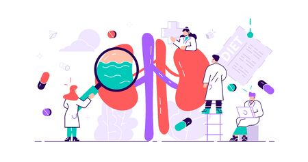 Nephrology concept. Abstract anatomical and medical inner organs disease treatment. Tiny kidney healthcare persons. Pharmacy research system and educational physiology study. Flat vector illustration