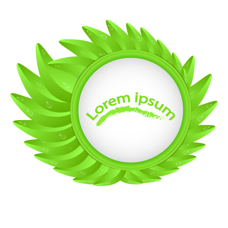 Circle on a background of green leaves with a place under the text isolated on a white sticker for a sticker, a label Illustration