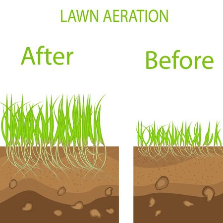 Lawn stage aeration illustration. Gardening of lawns, landscape design services. Vector on white background.Green lawn with on the ground in the context of aeration advantage.isolated on a white background Vetores