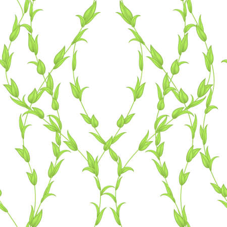 seamless pattern of stems and leaves of green color isolated on a white background. Summer or spring texture for printing on fabric or paper.Decor