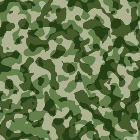 A camouflage pattern  Illusztráció