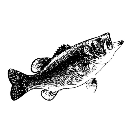black: A stamp-styled fish  Illustration