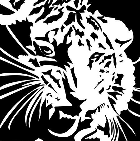 ferocious: Tiger