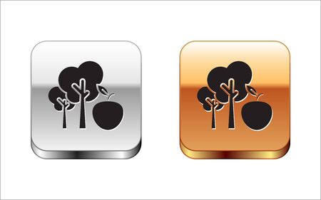 Black Tree with apple icon isolated on white background. Agricultural plant. Organic farm product. Gardening theme. Silver-gold square button. Vector Illustration