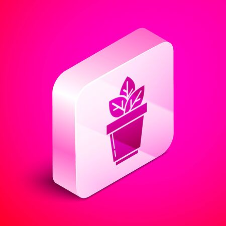 Isometric Flowers in pot icon isolated on pink background. Plant growing in a pot. Potted plant sign. Silver square button. Vector Illustration