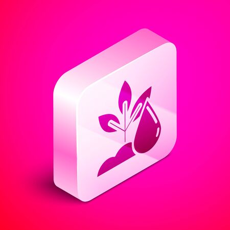 Isometric Watering plant icon isolated on pink background. Seed and seedling. Irrigation symbol. Leaf nature. Silver square button. Vector Illustration