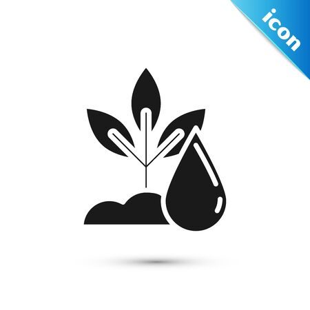 Black Watering plant icon isolated on white background. Seed and seedling. Irrigation symbol. Leaf nature. Vector Illustration
