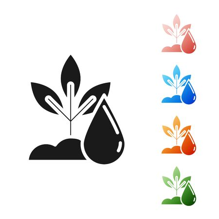 Black Watering plant icon isolated on white background. Seed and seedling. Irrigation symbol. Leaf nature. Set icons colorful. Vector Illustration
