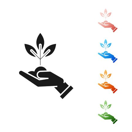 Black Plant in hand of environmental protection icon isolated on white background. Seed and seedling. Planting sapling. Ecology concept. Set icons colorful. Vector Illustration Ilustracja