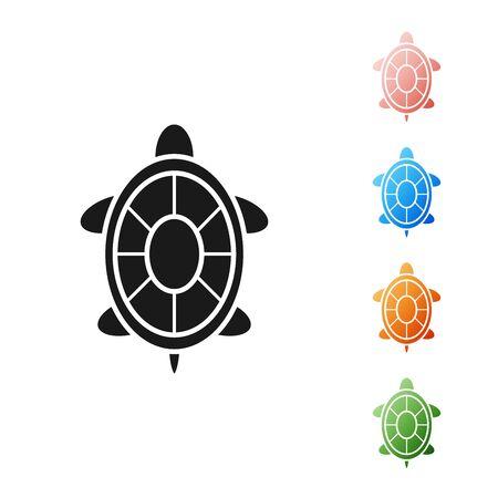 Black Turtle icon isolated on white background. Set icons colorful. Vector Illustration
