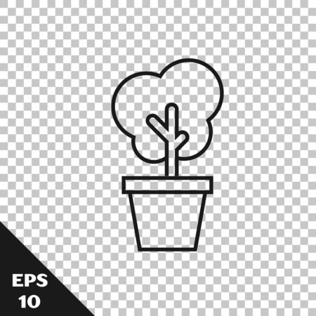 Black line Tree in pot icon isolated on transparent background. Houseplant in pots. Natural decor for home and interior. Potted plant sign. Vector Illustration