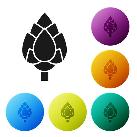 Black Hop icon isolated on white background. Set icons colorful circle buttons. Vector Illustration
