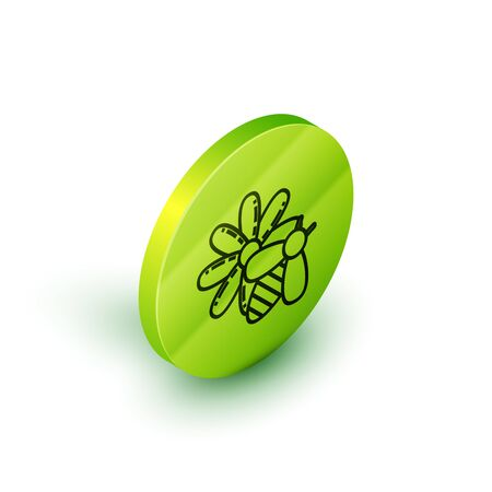 Isometric line Bee and flower icon isolated on white background. Sweet natural food. Honeybee or apis with wings symbol. Flying insect. Green circle button. Vector Illustration