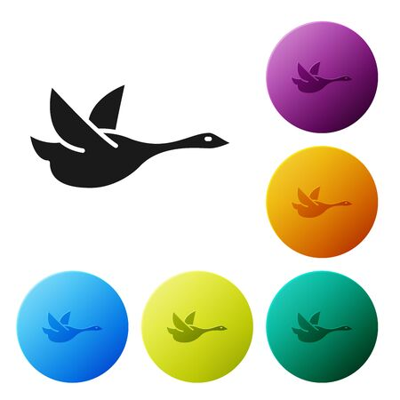 Black Flying duck icon isolated on white background. Set icons colorful circle buttons. Vector Illustration Banque d'images - 129008398