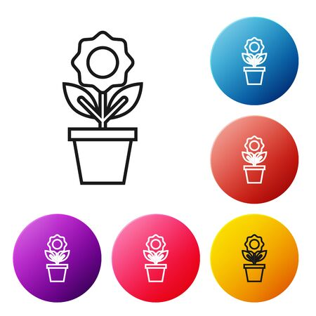 Black line Flower in pot icon isolated on white background. Plant growing in a pot. Potted plant sign. Set icons colorful circle buttons. Vector Illustration Illustration