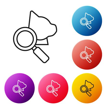 Black line Veterinary clinic symbol icon isolated on white background. Magnifying glass with cat veterinary care. Pet First Aid sign. Set icons colorful circle buttons. Vector Illustration