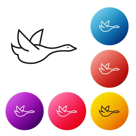 Black line Flying duck icon isolated on white background. Set icons colorful circle buttons. Vector Illustration Banque d'images - 129239164