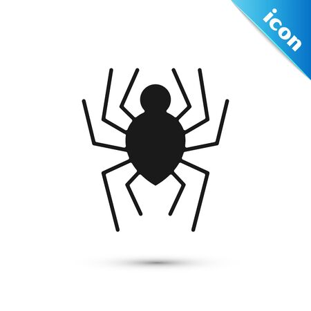 Black Spider icon isolated on white background. Happy Halloween party. Vector Illustration