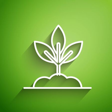 White line Plant icon isolated on green background. Seed and seedling. Leaves sign. Leaf nature. Vector Illustration