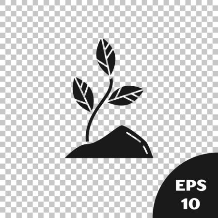 Black Sprout icon isolated on transparent background. Seed and seedling. Leaves sign. Leaf nature. Vector Illustration