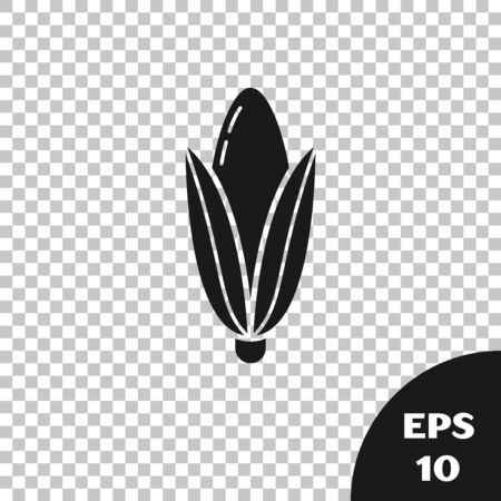 Black Corn icon isolated on transparent background. Vector Illustration