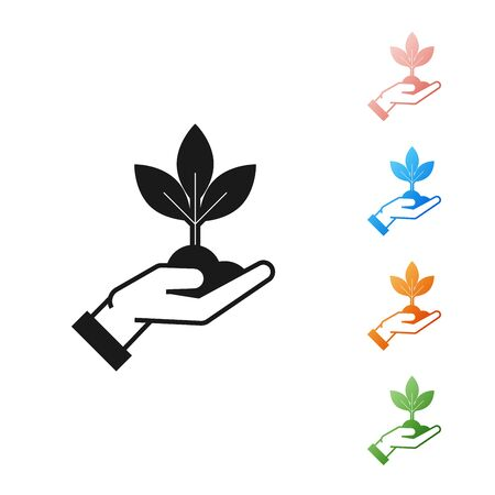 Black Plant in hand of environmental protection icon isolated on white background. Seed and seedling. Planting sapling. Ecology concept. Set icons colorful. Vector Illustration Çizim