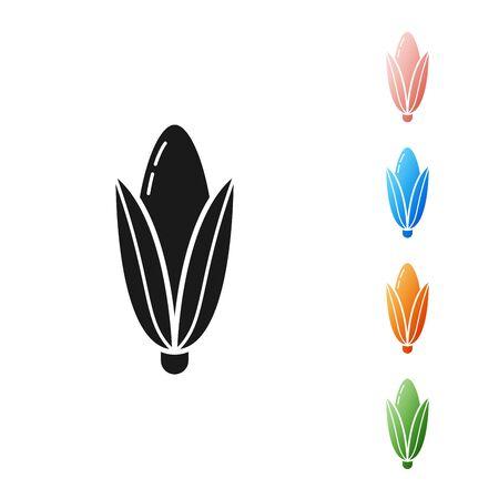 Black Corn icon isolated on white background. Set icons colorful. Vector Illustration