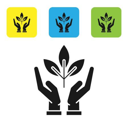 Black Plant in hand of environmental protection icon isolated on white background. Seed and seedling. Planting sapling. Ecology concept. Set icons colorful square buttons. Vector Illustration