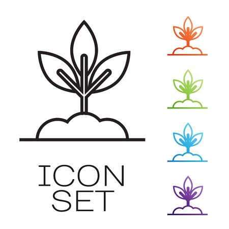 Black line Plant icon isolated on white background. Seed and seedling. Leaves sign. Leaf nature. Set icons colorful. Vector Illustration
