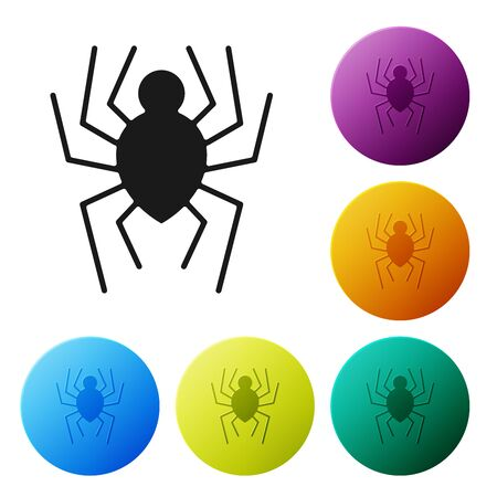 Black Spider icon isolated on white background. Happy Halloween party. Set icons colorful circle buttons. Vector Illustration
