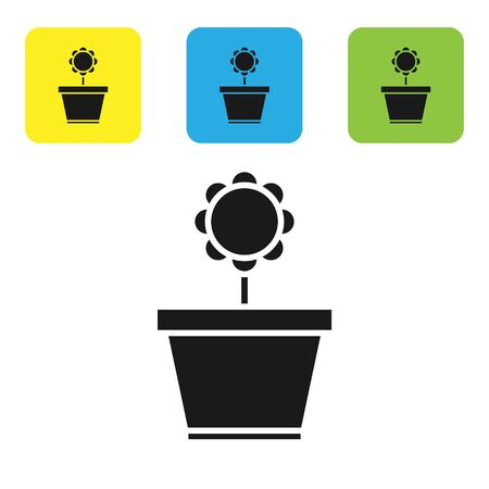 Black Flower in pot icon isolated on white background. Plant growing in a pot. Potted plant sign. Set icons colorful square buttons. Vector Illustration