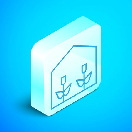 Isometric line Home greenhouse and plants icon isolated on blue background. Silver square button. Vector Illustration