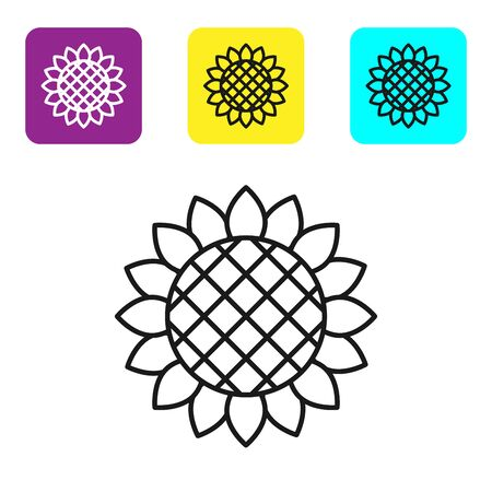Black line Sunflower icon isolated on white background. Set icons colorful square buttons. Vector Illustration
