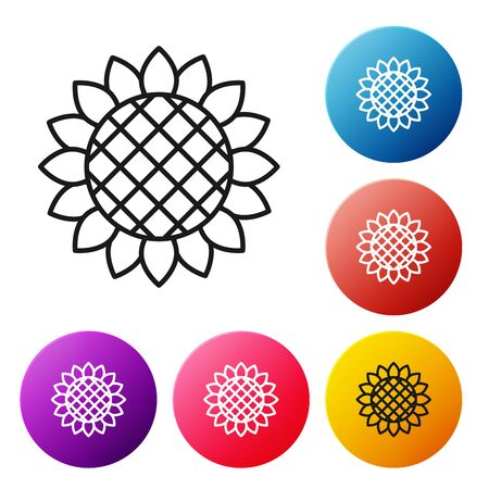 Black line Sunflower icon isolated on white background. Set icons colorful circle buttons. Vector Illustration