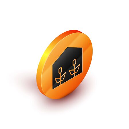 Isometric Home greenhouse and plants icon isolated on white background. Orange circle button. Vector Illustration