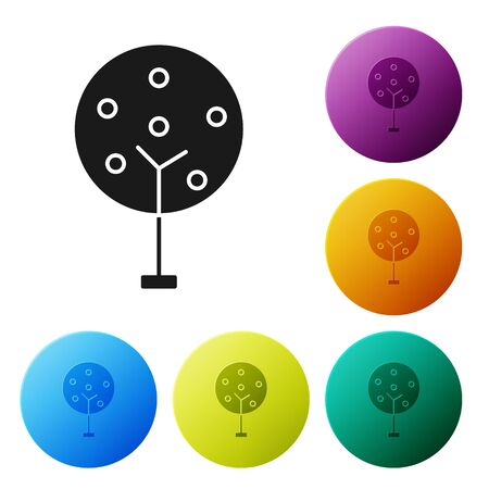 Black Tree icon isolated on white background. Forest symbol. Set icons colorful circle buttons. Vector Illustration Banque d'images - 134803101