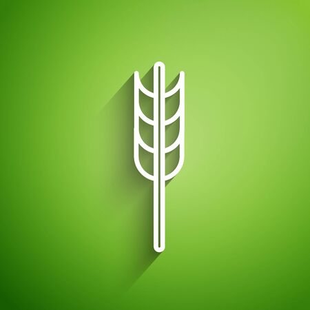 White line Cereals set with rice, wheat, corn, oats, rye, barley icon isolated on green background. Ears of wheat bread symbols. Vector Illustration