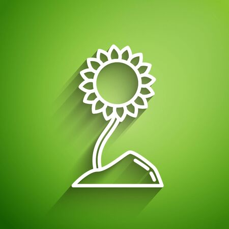 White line Sunflower icon isolated on green background. Vector Illustration  イラスト・ベクター素材