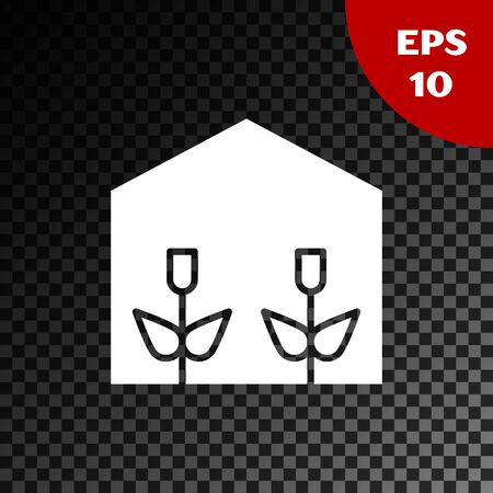White Home greenhouse and plants icon isolated on transparent dark background. Vector Illustration Standard-Bild - 134853648