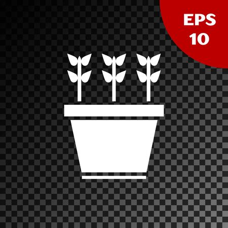 White Plants in pot icon isolated on transparent dark background. Plants growing in a pot. Potted plant sign. Vector Illustration Standard-Bild - 134853687