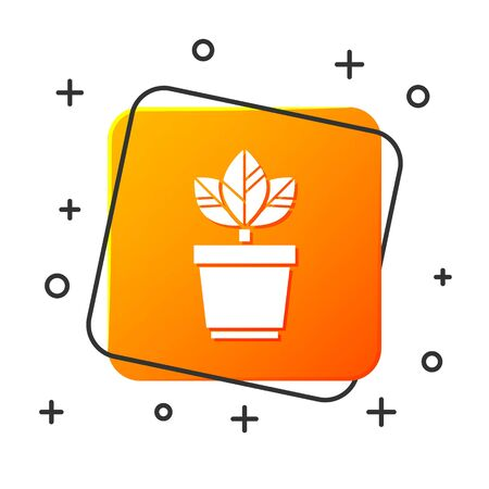 White Flowers in pot icon isolated on white background. Plant growing in a pot. Potted plant sign. Orange square button. Vector Illustration Illustration